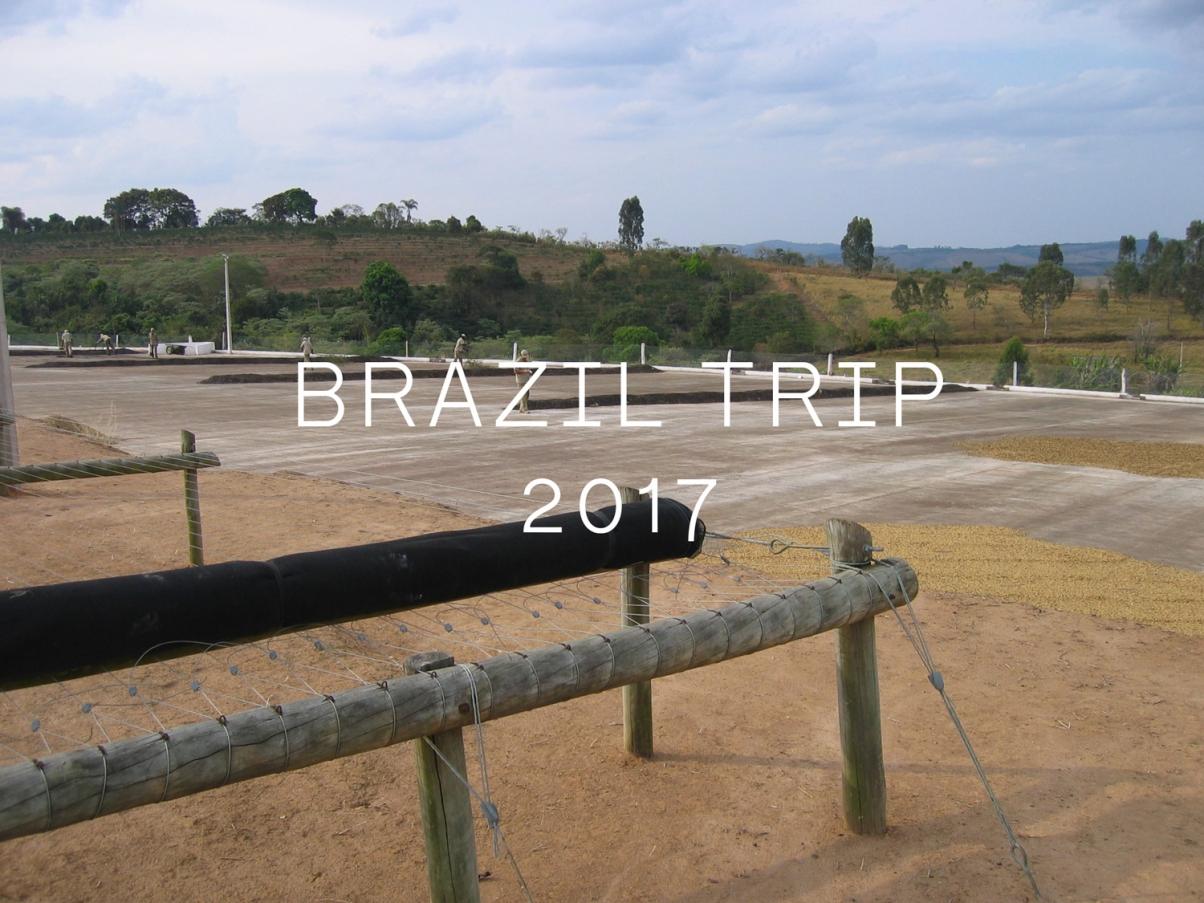 The Coffee Officina Brazil origin trip