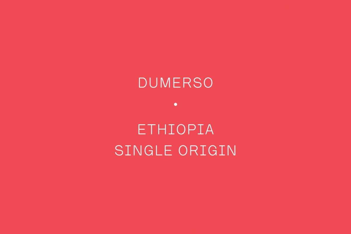 The Coffee Officina Dumerso Ethiopia Single Origin