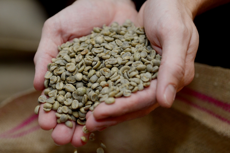 The Coffee Officina Samambaia Brazil