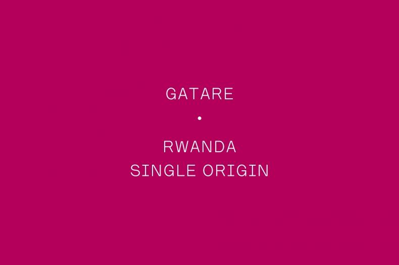 The Coffee Officina Gatare Rwanda Single Origin